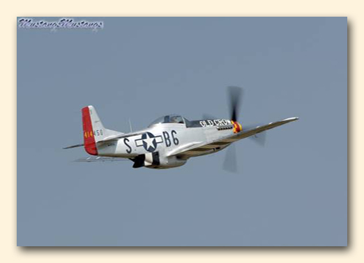 P-51Story6